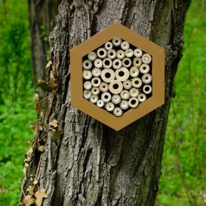 Designed to look wonderful in a garden, the Bee Hotel Chocolate is an ideal gift for a gardener or a wildlife enthusiast as well as anyone with a garden who is interested in garden design.