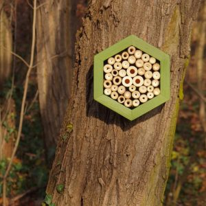 Designed to look wonderful in a garden, the Bee Hotel Fern is an ideal gift for a gardener or a wildlife enthusiast as well as anyone with a garden who is interested in garden design.