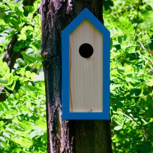 A stylish feeding haven, the Wooden Birdhouse Emma Turquoise is a great bird feeder in a quirky design that will look great when hung in the garden.