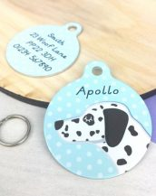 A lovely little gift for a pet owner or a stocking filler, the Dalmation Dog Personalised Pet Name ID Tag provides the ideal accessory for your beloved pets.