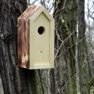 A stylish feeding haven, the Wooden Birdhouse Emma Prometheus is a great bird feeder in a quirky design that will look great when hung in the garden.