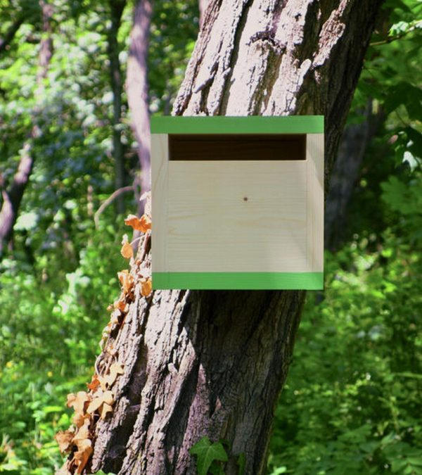 Wooden Birdhouse Rubikus Avocado – 7