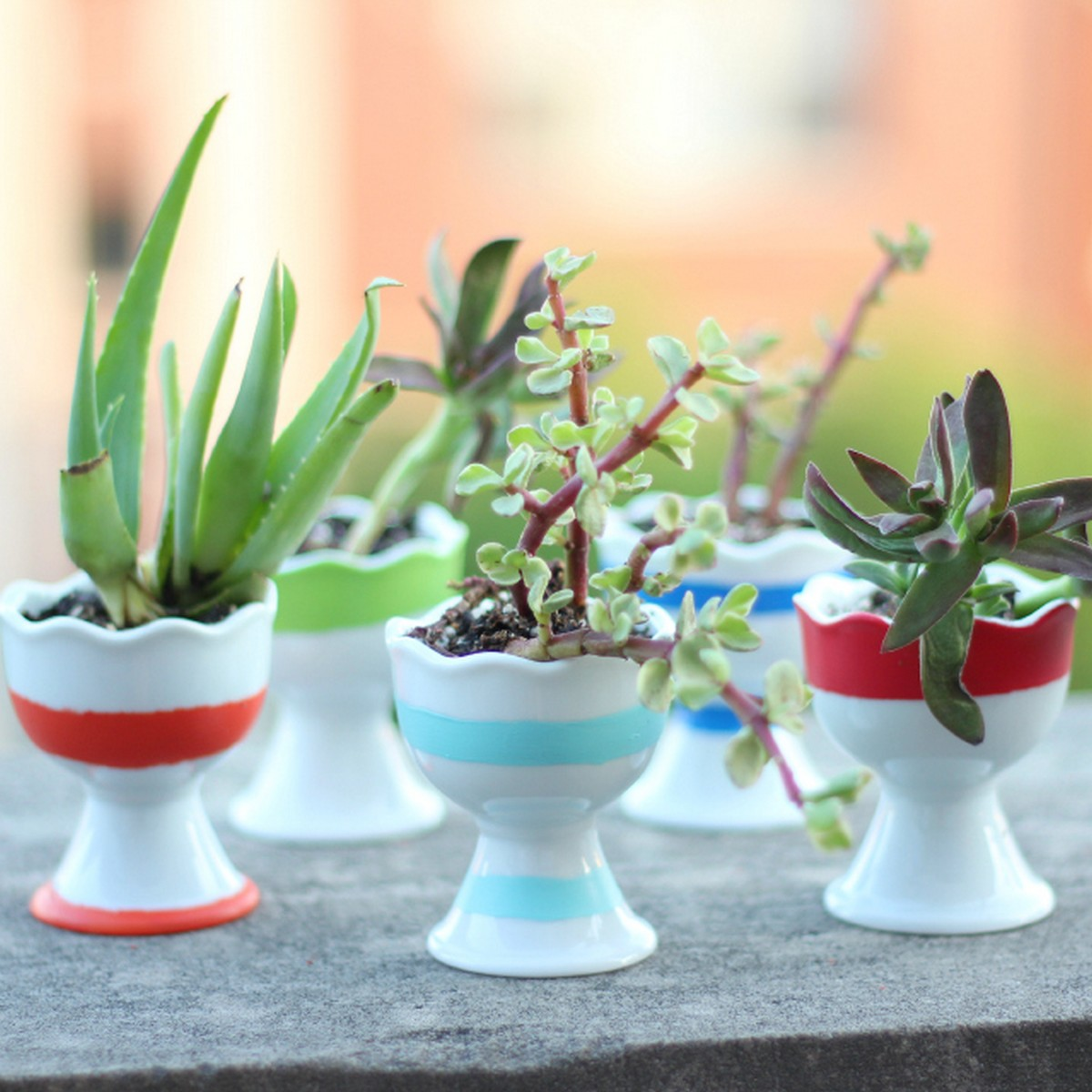 Try one of these ideas for simple DIY vase projects, artfully arranging flowers in common household wares and other creative display concepts.