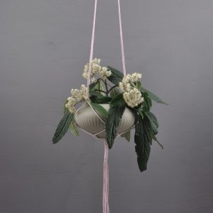 Beautifully designed with complex macramé knots, this plant hanger is perfect for any decorating style.
