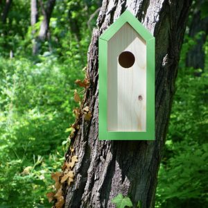 A stylish feeding haven, the Wooden Birdhouse Emma Avocado is a great bird feeder in a quirky design that will look great when hung in the garden.