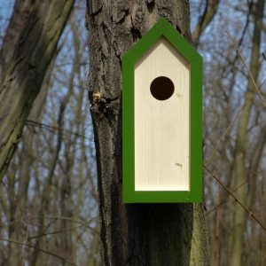 A stylish feeding haven, the Wooden Birdhouse Emma Fern is a great bird feeder in a quirky design that will look great when hung in the garden.