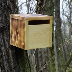 A stylish feeding haven, the Wooden Birdhouse Rubikus Prometheus is a great bird feeder in a quirky design that will look great when hung in the garden.